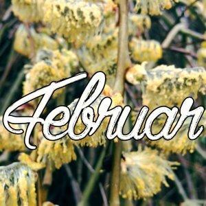 februar i haven