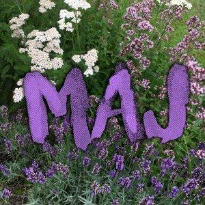 maj i haven