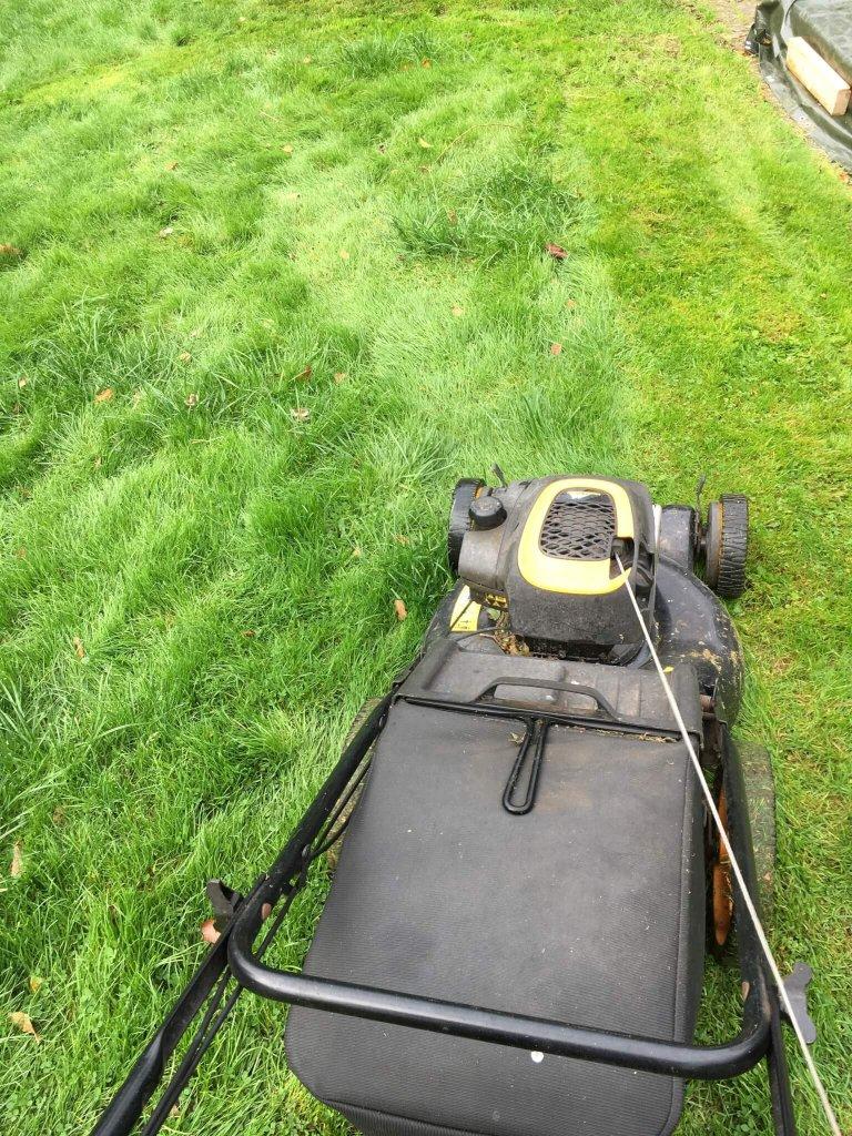 slå græsset