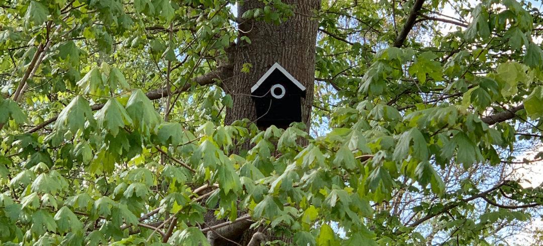 hjemmelavet fuglehus af genbrugs materialer